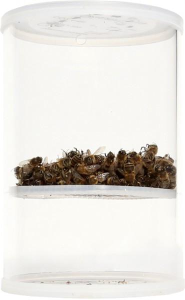 Varroa-Tester