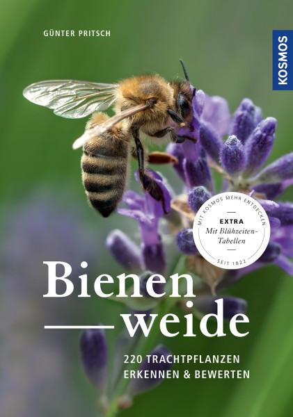Bienenweide, 220 Trachtpflanzen erkennen und bewerten